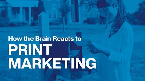 How the Brain Reacts to Print Marketing